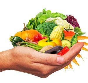 Frisches Gemüse in der Hand - Fresh vegetables in the hand